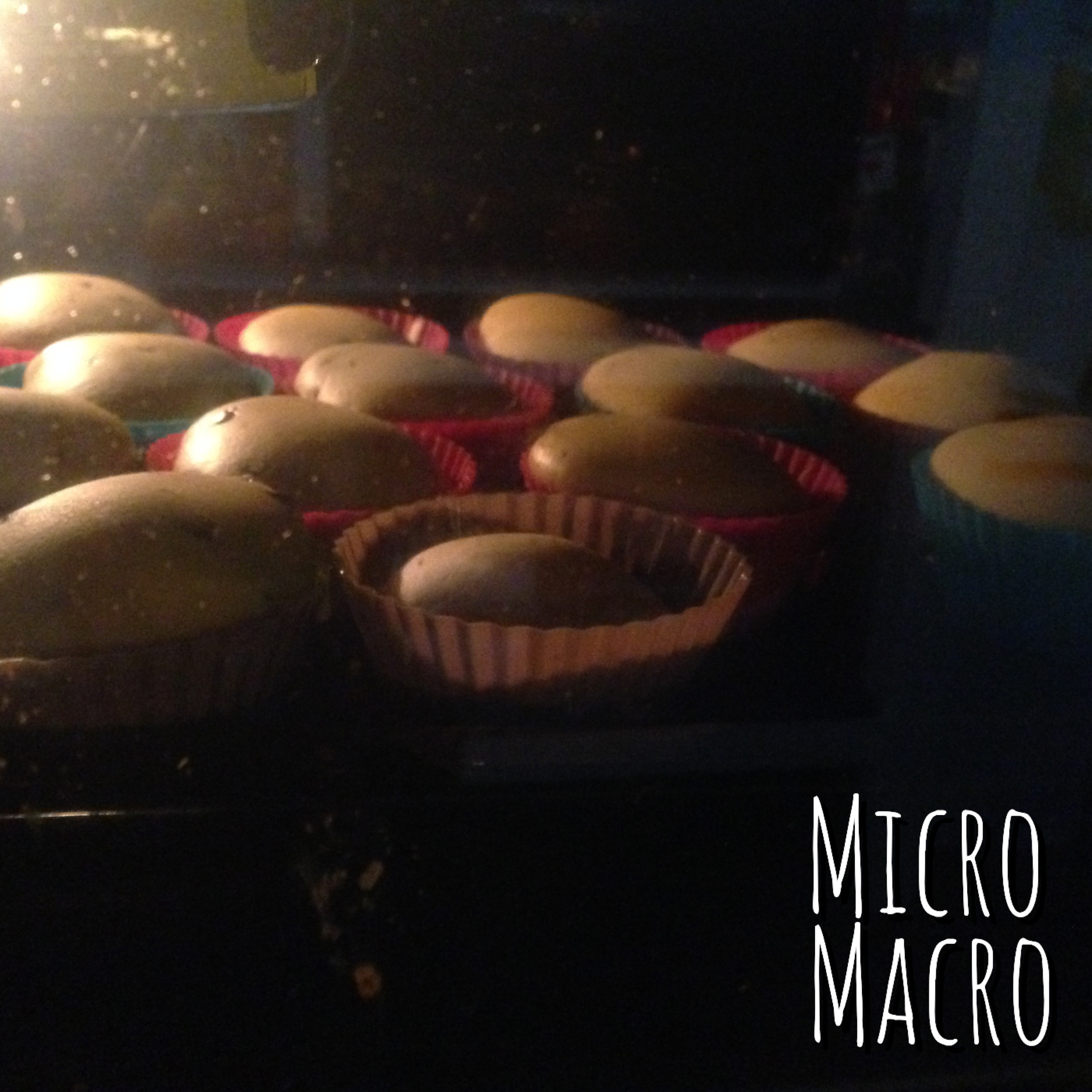 muffin-zucca-cioccolato-cottura-micromacro-food